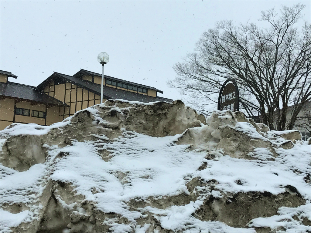 2017.3.7 tue. 鈴木牧之記念館前に突如現れた八海山??