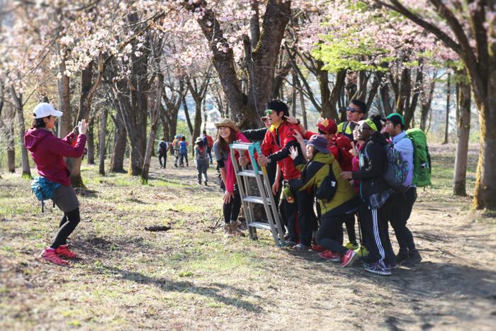 2017.4.23 sun. 坂戸山ラ部 桜・カタクリ満開の素敵な午後。