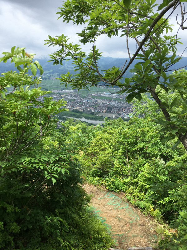 2017.7.2 sun.百花繚乱 色んな花が彩る坂戸山|新潟県南魚沼|BY HUNTER-SHISHIMAI