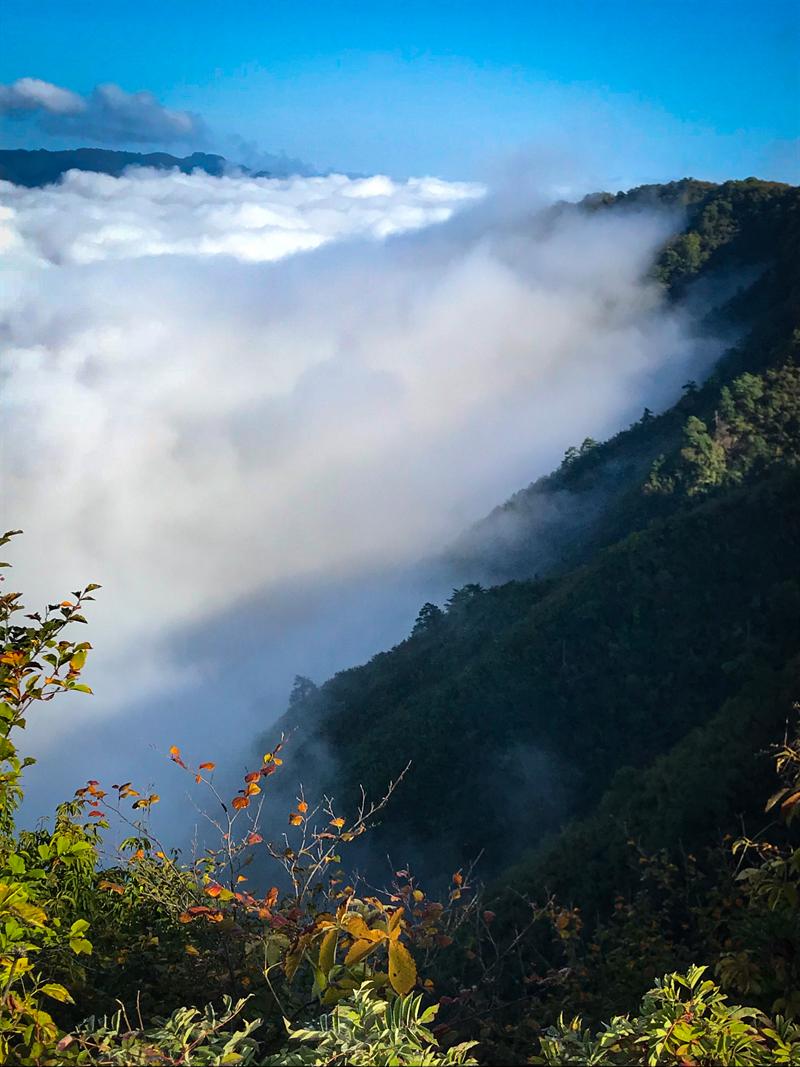 2018.10.18 thu. 久々の坂戸山山頂からの雲海 BY AKANE-DESIGN